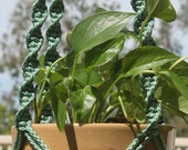 HELIX - Teal Green Handmade Macrame Plant Hanger Holder with Wood Beads - 6mm Braided Poly Cord in SAGE