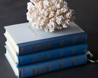 Gorgeous Vintage German Decorative Books -- Shades of Blue -- Set of 3
