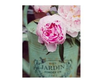 Pastel Pink Peony Photograph, Flowers Photo, Mint, Shabby Chic, Dreamy, Cottage Decor, Jardin, Garden, Peonies, Paris Roses,Nature Print