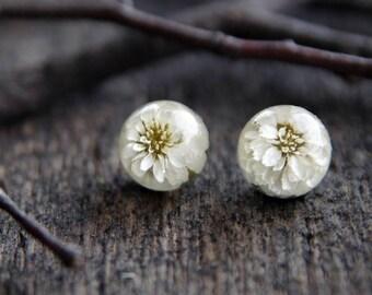 Real Flowers Resin Earrings - white stud earring - real dried flowers shpere studs - 925 Sterling silver post