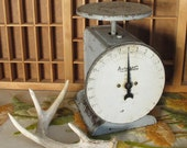 Auto Wate 25lb. Vintage Kitchen Scale in Light Gray