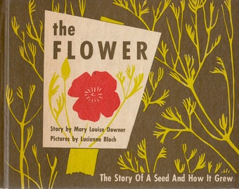 The Flower: The Story of a Seed and How It Grew by Mary Louise Downer, illustrated by Lucienne Bloch