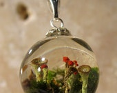 Pixie cup and lipstick Lichen (Cladonia sp.) and Moss (Dicranoweisia sp.) Sphere Necklace, Plant Jewelry, mycology, fungi, woodland, nature