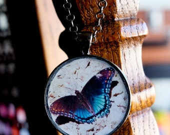 Scream of the Butterfly - Handmade photo pendant necklace - resin round gunmetal - Red-Spotted Purple butterfly - Smoky Mountain Tennessee