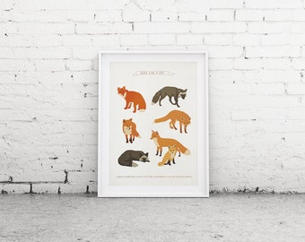 Printable Art, Fox Print, Art Poster, Woodland Decor, Wall Art, Nursery Wall Art, Downloadable Print