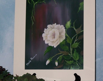 White Rose floral Art print 8in x 10in
