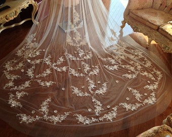 Cathedral lace wedding veil, 2 tiers lace veil, wedding veil with blusher