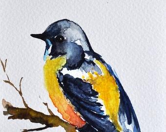 ORIGINAL Watercolor Painting, Colorful Blue Yellow Bird, Original Art 4x6 inch