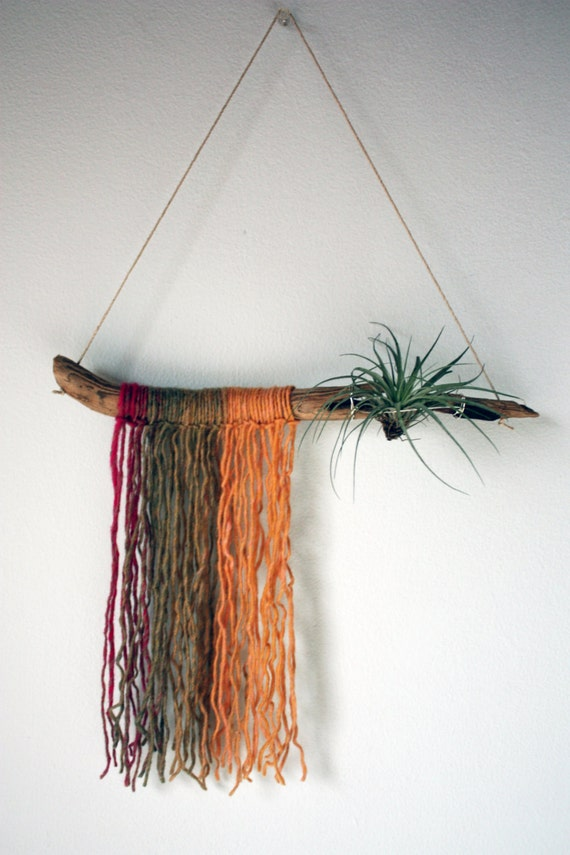 Driftwood air plant hanger yarn wall hanging sunset for Air plant wall hanger