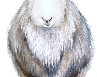 Limited edition print - Molly the Herdwick sheep, sheep print, Herdwick print