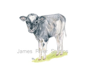 Cow Art Cow Painting Cow Print. Cow Watercolor Painting Animal Watercolor Print Cow Nursery Art Baby Cow Calf Barn Country Farm Animal Art.