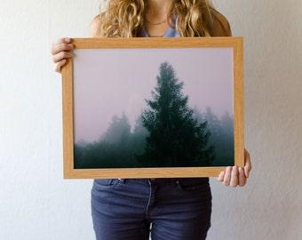 "Photo print ""Trees in fog"" // Photography // Wall art // Art print // Trees // Fog // Mornings // Nature //"