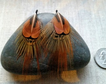 Pheasant Earrings. Hand Tied Feather Earring. Very Classy. Natural Feathers. Iridescent Pheasant Feathers.