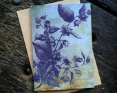 Deadly nightshade, Witchcraft Antique Botanical Print, Witch Herbs, Book of Spells, Wiccan Altar, Witch Home Decor, Luxury greeting card.