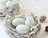 Winter Bird Nest Home Decor