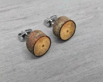 Spalted Apple Wood Slice Stud Earrings - Wooden Post Earrings - Fruitwood Bark Earrings with Surgical Steel