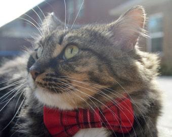 Red tartan plaid cat bow collar, red plaid cat collar, red tartan cat bow tie, red cat collar, holiday cat collar, kitten collar, kitten bow