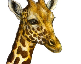 Acrylic giraffe painting