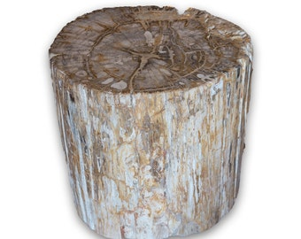Petrified Wood Stool PF-2065
