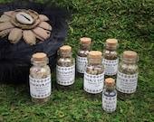 Witch Herb Kit. 6pcs