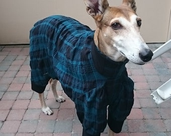 Pyjamas for greyhounds
