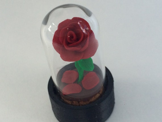 Beauty And The Beast Red Rose With Fallen Petals Rose Dome