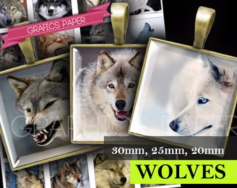 Square Images Wolf  1x1 inch and 30mm 25mm 20mm size Printables for Scrapbooking, Tiles Digital Collage Sheet Instant Download QD63