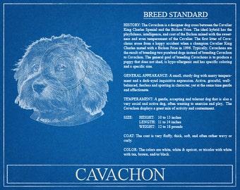Cavachon Portrait / Cavachon Art / Cavachon Wall Art / Cavachon Print / Cavachon Gift