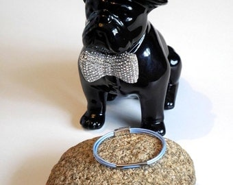 The dog jewel made in France. The Tinou-Jewel Pastel Light-Blue