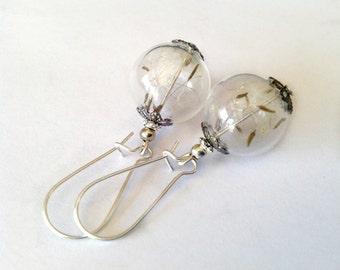 Dandelion earrings Real dandelion seed earrings  Mini terrarium jewelry Dandelion jewelry Flower earrings Wish dandelion seeds Earrings Gift