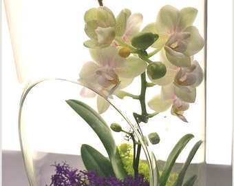 Orchid Globe order for 3