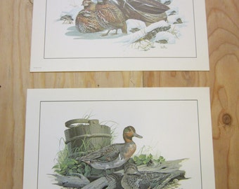 Lot of 2 Vintage Don Balke Signed Wildlife Lithograph Prints * Bobwhite Quail and Duck Prints