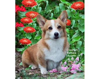 Corgi Dog Flag, Pembroke Welsh Corgi Flag, Corgi Art, Corgi Gift