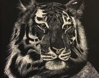 Tiger by Shavonne