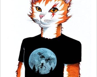 Self-portrait of stray cat
