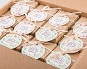 Pack 24 cajitas de hierbas aromáticas