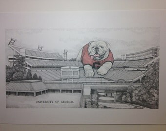 University of Georgia Stadium w/ bulldog 11x17 partially hand-colored print