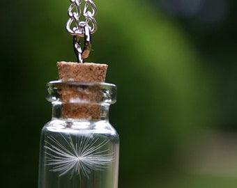 Dandelion wish necklace - Glass Vial necklace with Dandelion Seeds silver necklace, make a wish bottle, long necklace