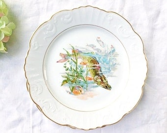 Set of 6 Portuguese Fish Plates: Plate with Pike, Plate with Trout, Plate with Catfish, Vintage Fish Portrait Plates, Set of Luncheon Plates