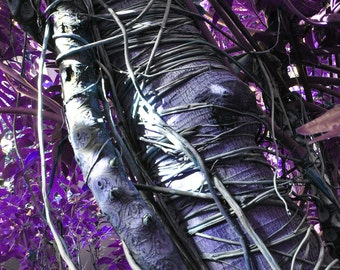 Vine Wrapped in Purple 8x10 glossy print
