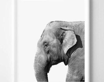 Elephant print, Minimalistic, African Safari, Animal print, Minimal art, Modern Wall decor, Digital art, Printable, Instant Download 16x20