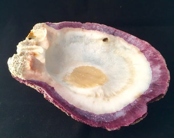Large Decorative Shell; Clam Shell; Soap Dish; Trinket Dish; Bathroom Decor; Beach Themed Decor; Purple and White Shell