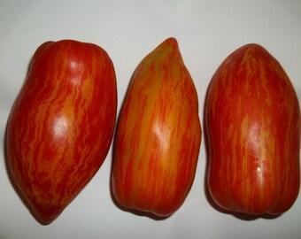 Striped Roman Tomato Seeds - Heirloom - Organic - 2015 - 15 Seeds