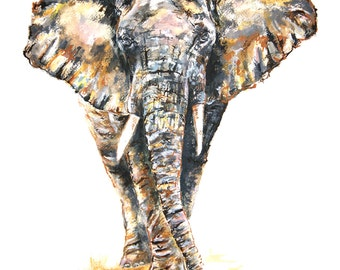 Limited Edition A3 African Elephant Print