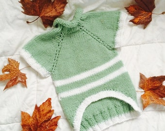 Green & White Striped Knitted Dog Sweater Available In Different Colors