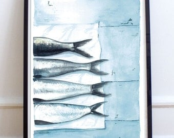 Illustration - sardines