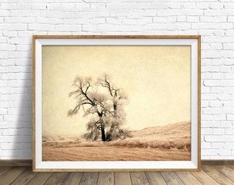 "landscape photography, instant download art, printable art, instant download art, farmhouse chic, farmhouse wall art, rustic art -""Fade"""