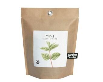 Mint Garden-in-a-Bag – Self Contained Grow Kit – Eco Friendly – Herb Garden Kit - DIY Garden – Mothers Day – Kitchen Herb - Indoor Garden