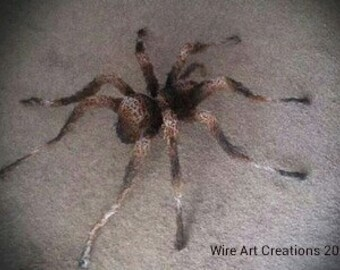 Giant house spider wire sculpture.