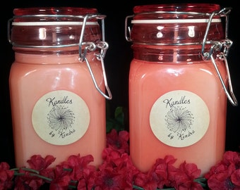 Homemade Soy Cinnamon Fragranced Candle Duo 10 oz each